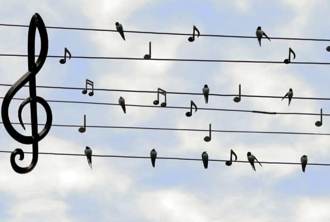 Musik macht Mut!
